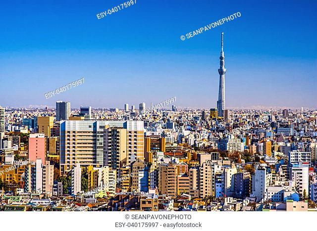 Tokyo, Japan afternoon skyline with Tokyo Sky Tree