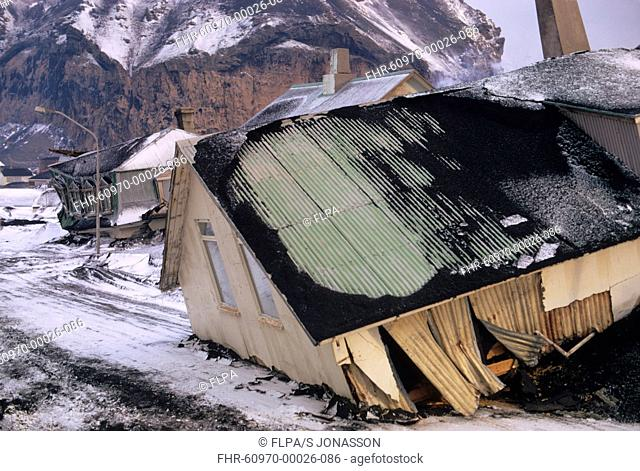 Destruction of town following eruption of volcano, houses moved into street by lava flow, Eldfell Volcano, Heimaey, Westmann Isles, Iceland, 1973