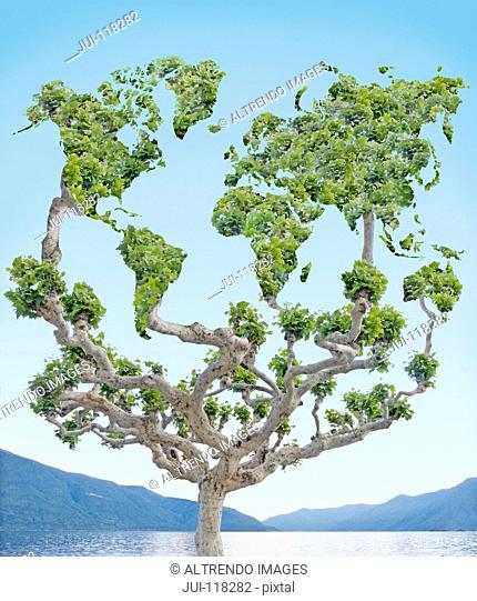 Tree With Leaves Forming Shapes Of Continents Of The World