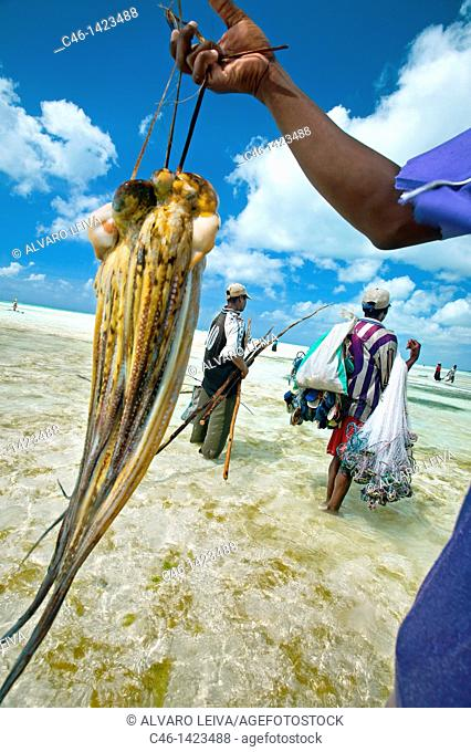Jambiani beach, Fishermen  Zanzibar Island  Tanzania