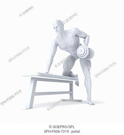 Bodybuilder lifting weights, computer artwork