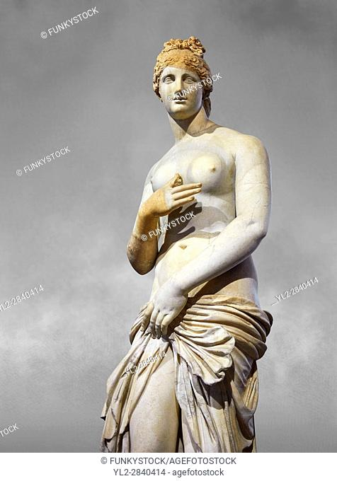 Roman Statue of Venus (Aphrodite), a 2nd - 3rd century AD marble statue from Italy. This Roman statue of Aphrodite is the result of a fit between the bottom of...