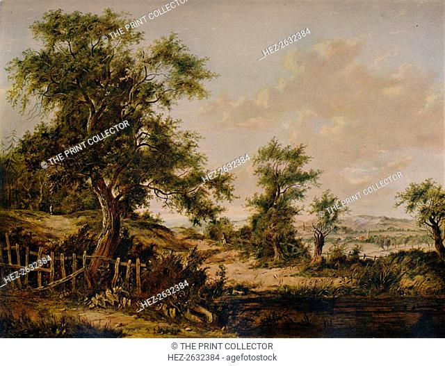 'Landscape, with Pool and Tree in foreground', 1828. Artist: Patrick Nasmyth