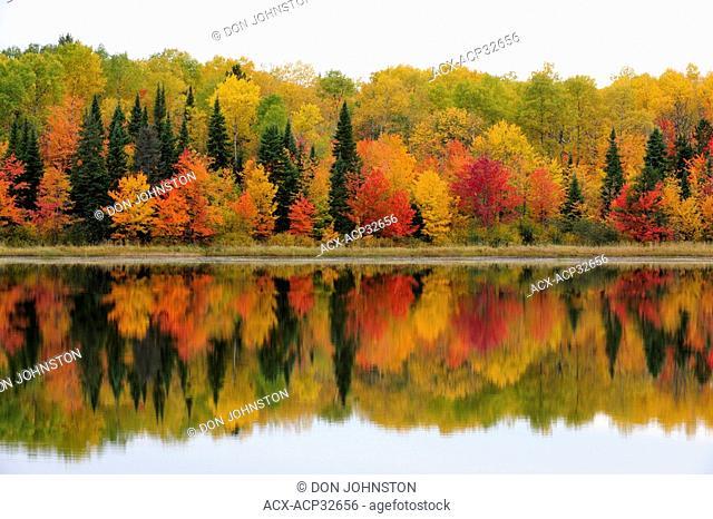 Autumn reflections in Gryphon Lake. Espanola, Ontario, Canada