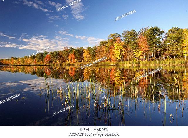 Beautifill fall color in the Muskoka region of Ontario Canada