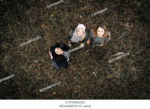 Three happy friends in autumnal nature, aerial view