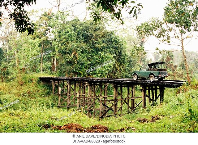 Car on wooden bridge , Kaziranga national park , Assam , India