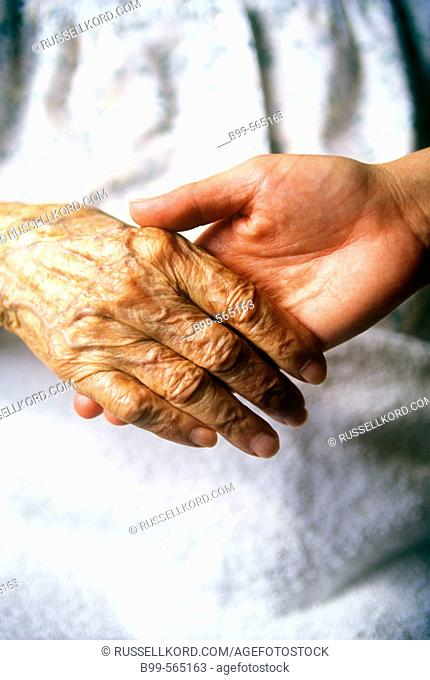 Hands Of 95 And 40 Year Old Women