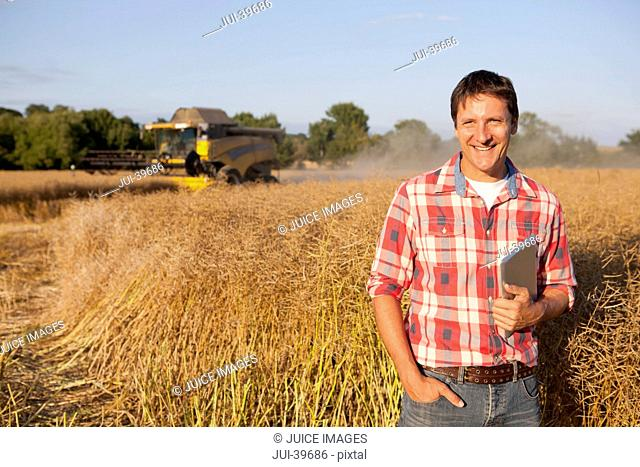 Farmer Checking Harvest Of Rapeseed Crop In Field