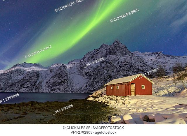 Northern Lights illuminate snowy peaks and the wooden cabin on a starry night at Budalen Svolvaer Lofoten Islands Norway Europe