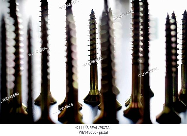 Still life of screws