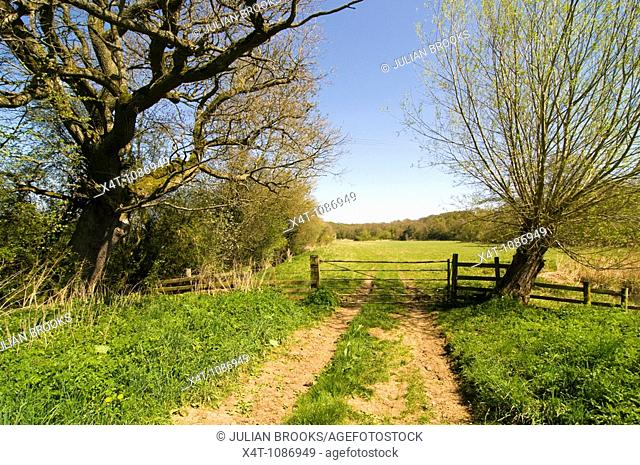 A gate across a country track on the bank of the River Cherwell in Oxfordshire, spring sunshine