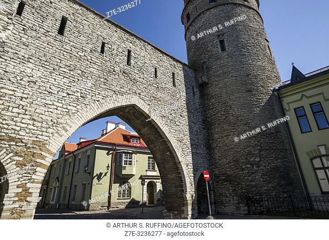 Monastery Gate (Kloostrivärav) and Nun's Tower (Nunnatorn), Tallinn City Walls (Tallinna linnamüür). Old Town, Tallinn, Estonia, Baltic States