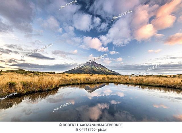 Stratovolcano Mount Taranaki or Mount Egmont reflected in Pouakai Tarn, Mount Egmont National Park, Taranaki, North Island, New Zealand