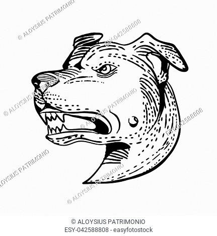 Artwork Terrier Dog Stock Photos And Images
