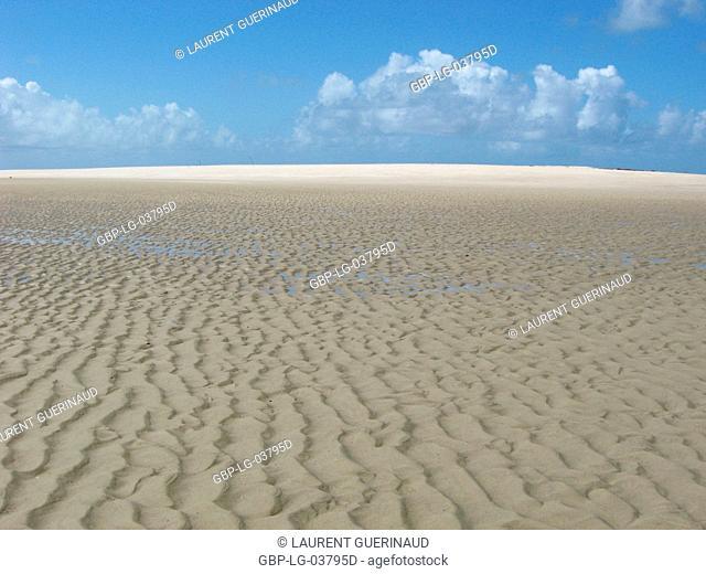 Beach, Dunes, São Paulo Hill, Salvador, Bahia, Brazil