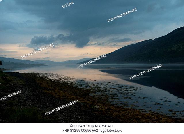 View of sea loch at sunset, Loch Fyne, Clachan, Cairndow, Trossachs, Argyll and Bute, Scotland, July