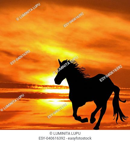 Silhouette of horse galloping at sunrise