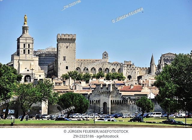 Panorama of Avignon with town wall, the Palais des Papes and the cathedral, Provence, France