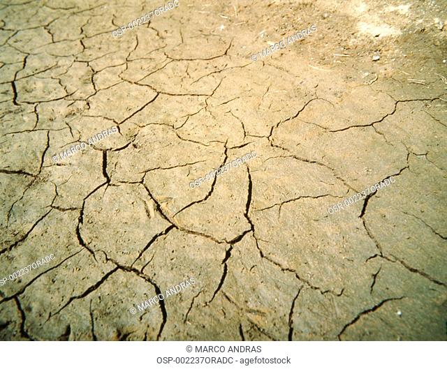 a dried and cracked up soil