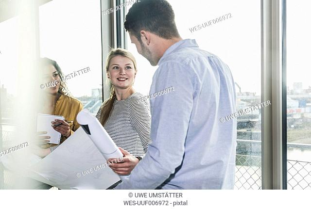 Three colleagues discussing plan in office