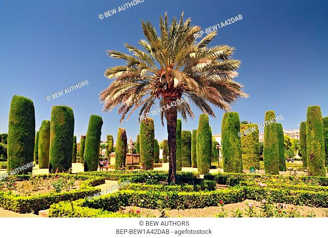 Pain Andalusia Cordoba The Alcazar Of The Christian Kings Cypress Alley And Basins In The Gardens