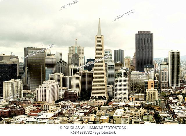 The Transamerica Pyramid and other buildings in the financial district of San Francisco, California, USA