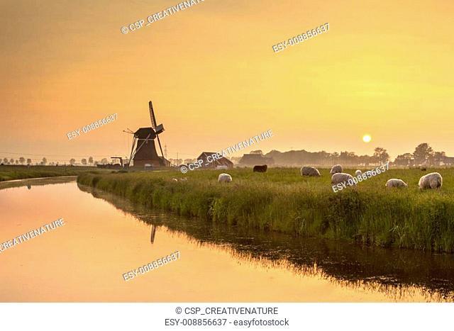 Dutch Polder Landscape during Orange Sunset
