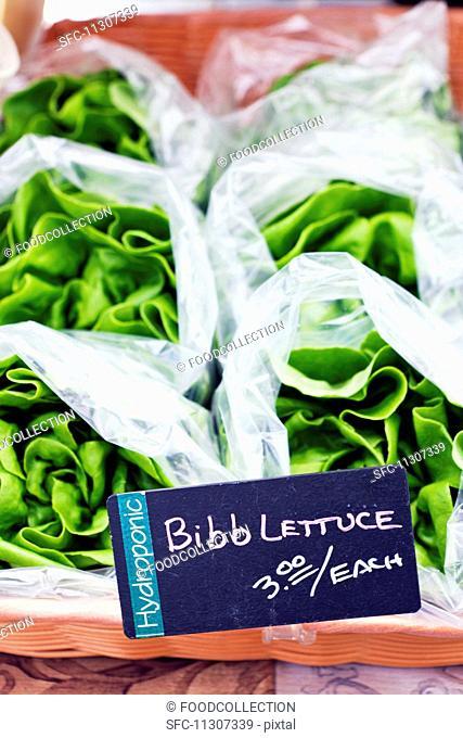 Lettuce in plastic bags at a farmer's market