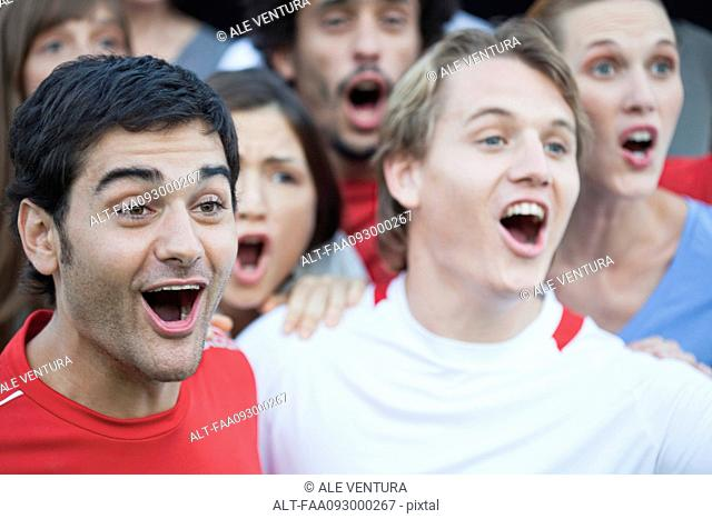 Spectators at sports match