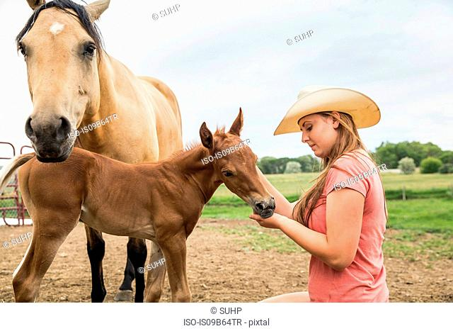 Young woman on farm, stroking foal, horse standing beside foal