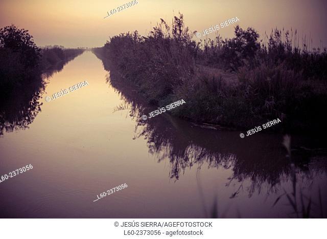 Ebro delta. Tarragona province, Catalonia, Spain