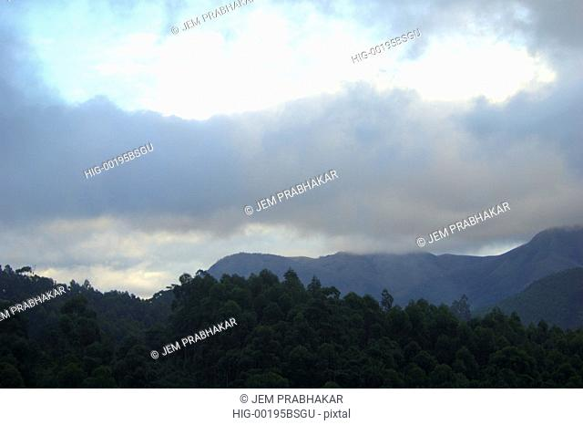 A VIEW OF WESTERN GHATS IN MUNNAR, KERALA, INDIA