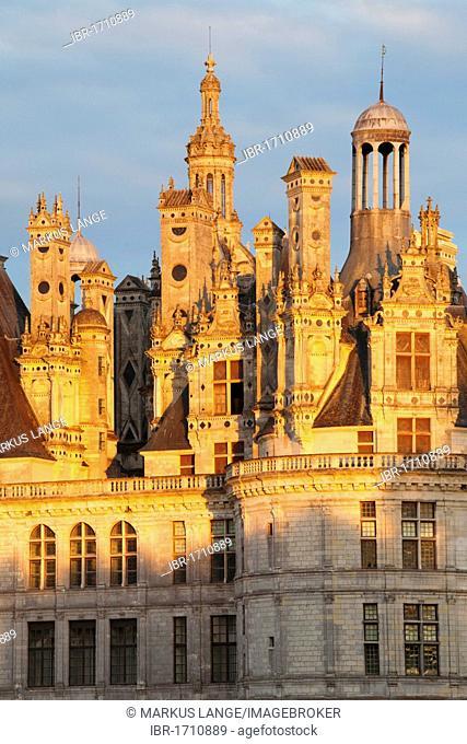 Roof with chimneys, Château de Chambord castle, Chambord, Département Loir-et-Cher, Region Central, France, Europe