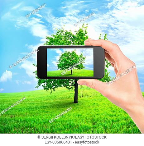 Mobile phone in hand and tree in field