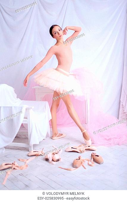 Professional ballerina posing against the backdrop of pink veil and pointes
