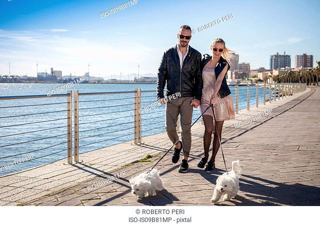 Couple walking dogs on promenade, Cagliari, Sardinia, Italy, Europe