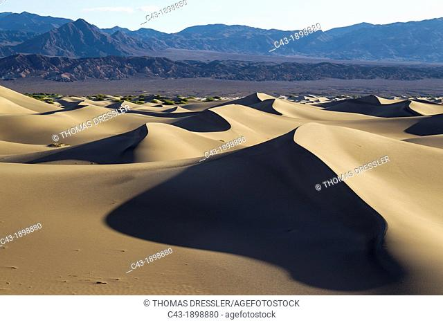 Mesquite Flat Sand Dunes and Amargosa Range in the Death Valley in the early morning  Death Valley National Park, California, USA