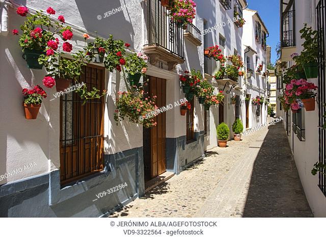 Typical street with flowers in Barrio de la Villa, Priego de Cordoba. Cordoba province, southern Andalusia. Spain Europe