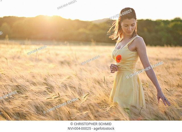 Woman walking through a wheat field, dreamily running her fingers over the wheat ears