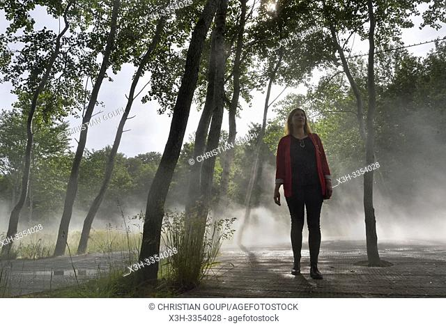 """""""""""""""""""""""Cloud installation"""""""" par Fujiko Nakaya, Pres du Goualoup, Domaine de Chaumont-sur-Loire, departement Loir-et-Cher, region Centre-Val de Loire, France"""