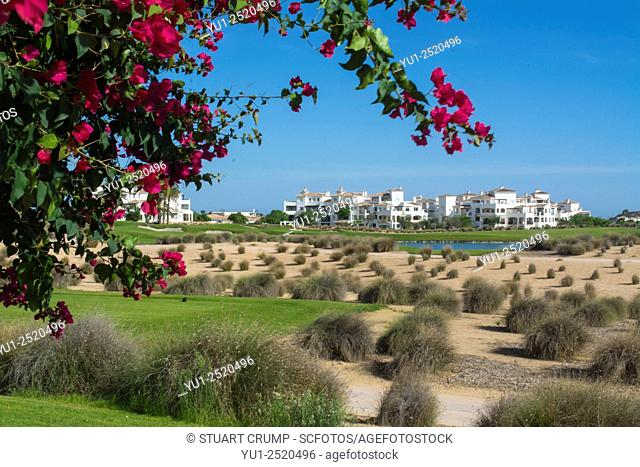 Views of the Golf Course at Hacienda Riquelme Golf Resort framed with Bougainvillea, Murcia, Spain