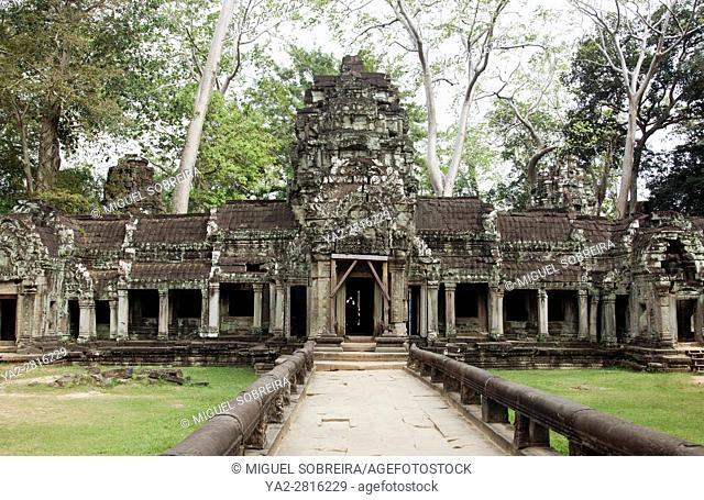 Ta Prohm Temple at Siem Reap, Cambodia