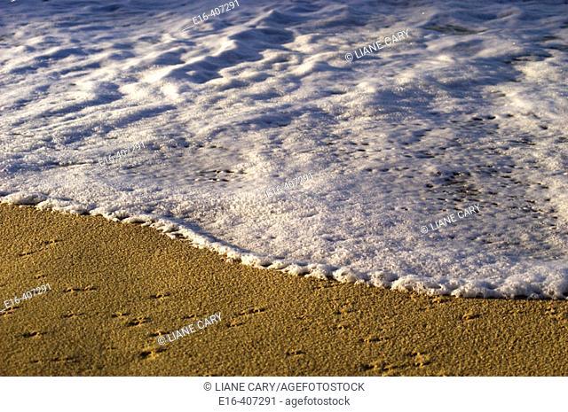 White water and beach sand