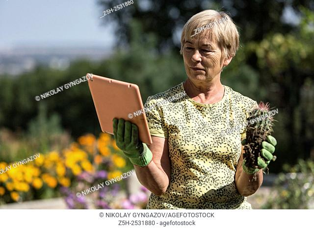 Russian Federation. A pensioner in the garden to the plate