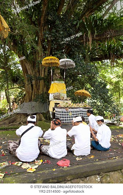 Religious ceremony at the holy water temple of Tirta Empul during Kuningan festival, Tampaksiring , Bali, Indonesia