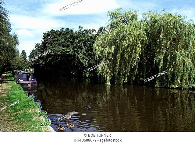 Narrow Boat Grand Union Canal Hertfordshire England