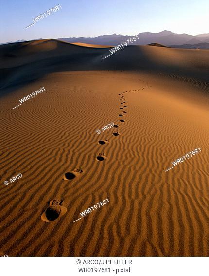 Tracks, on, sand, dunes, Death, Valley, California, USA