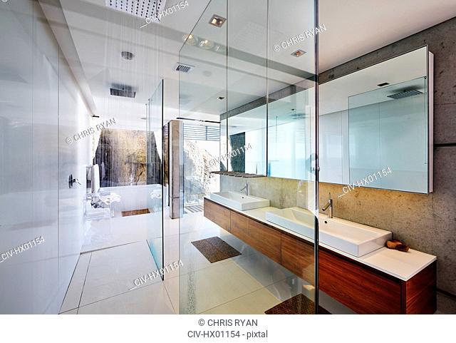 Modern luxury home showcase bathroom