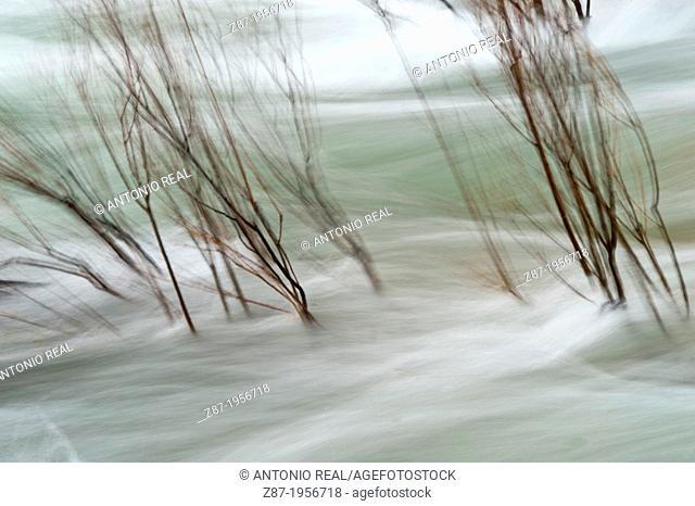 Río Segura. Las Juntas. Parque Natural de Cazorla, Segura y Las Villas. Jaen. Andalusia. Spain